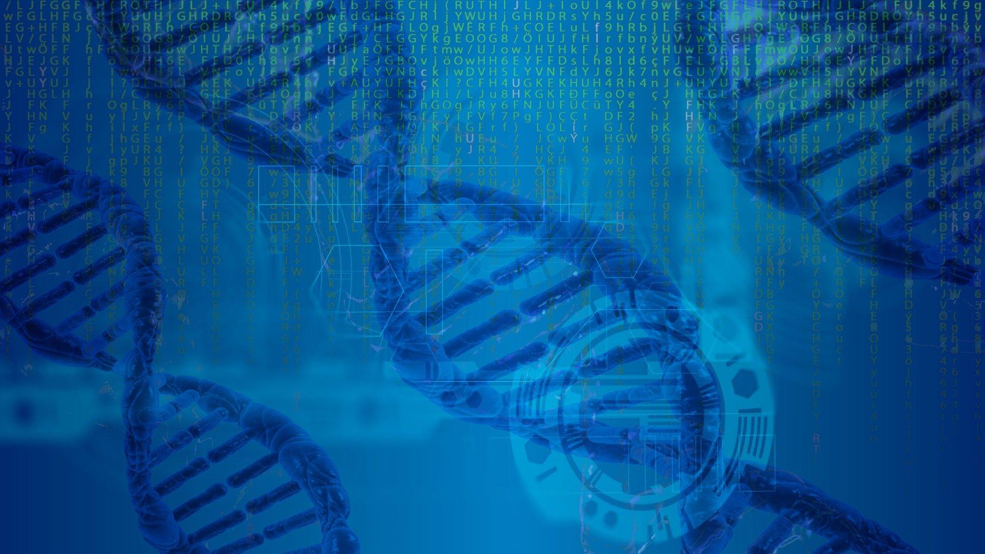 Core Value DNA